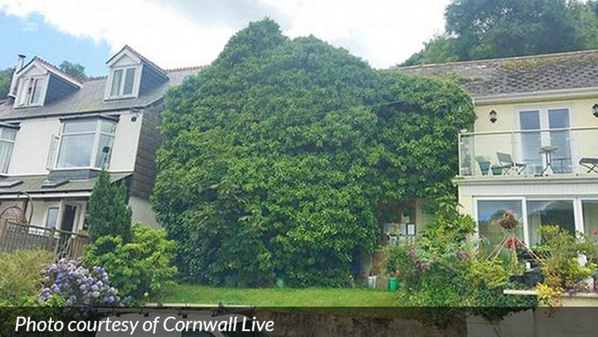 One In Ten Homes In Cornwall Is Left Empty